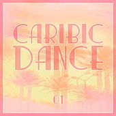 Caribic Dance, Vol. 1 by Various Artists