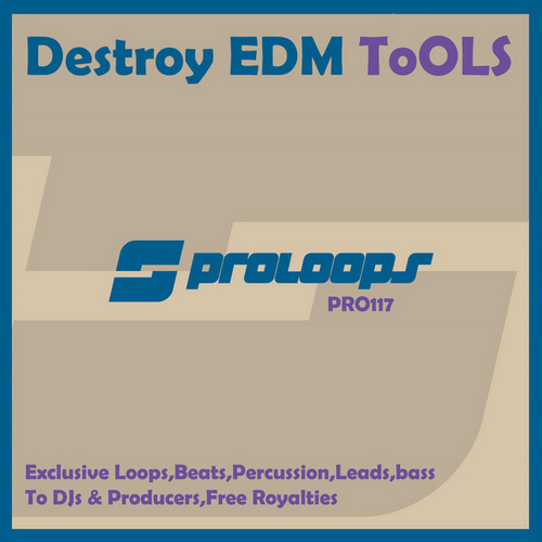 Destroy EDM Tools Vol.2 by Supa Man (Kelvin Mccray)