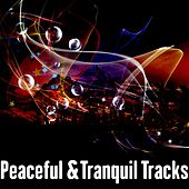 Play & Download Peaceful &Tranquil Tracks by Meditation Music Zone | Napster