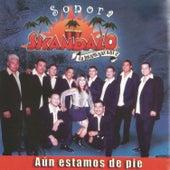Aún Estoy de Pie by Sonora Skandalo
