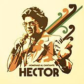 Homenaje al Cantante...Hector by Various Artists