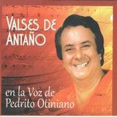 Play & Download Valses de Antaño by Pedrito Otiniano   Napster