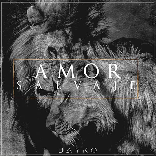 Play & Download Amor Salvaje by Jayko | Napster