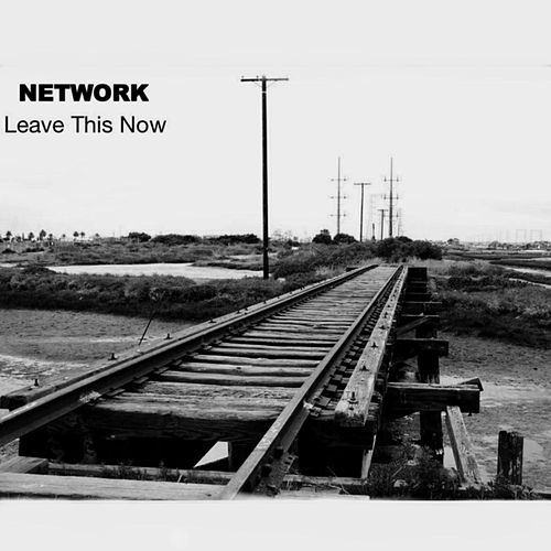 Play & Download Leave This Now by The Network | Napster