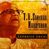 T. V. Sankaranarayanan - The Carnatic Maestro by Kannan