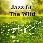 Jazz In The Wild von Various Artists