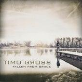 Fallen from Grace by Timo Gross