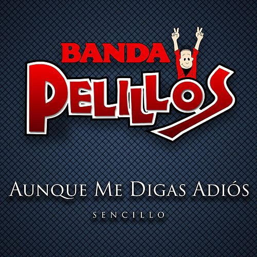Play & Download Aunque Me Digas Adios by Banda Pelillos | Napster