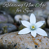 Play & Download Relaxing New Age for Spa – Nature Sounds to Rest, Relaxing Waves, Calming Music, Peaceful Melodies by Sound Library XL | Napster