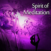 Play & Download Spirit of Meditation – New Age Music, Perfect for Meditation Background, Yoga Music, Pure Relaxation by Meditation Spa | Napster