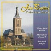 Psalm Improvisaties by John Propitius