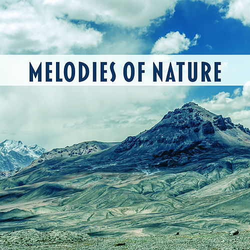 Play & Download Melodies of Nature – Relaxing Music, Soft Sounds on New Age, Spa, Zen by Soothing Sounds | Napster