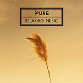 Pure Relaxing Music – Sounds of Nature, Relaxing Music, Rest after Work, Calm Meditation, Buddha Lounge by Buddha Lounge