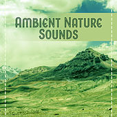 Ambient Nature Sounds – Relaxing Music, Best for Deep Relaxation, Spa at Home, Beauty Parlour, Rest by Relaxation - Ambient