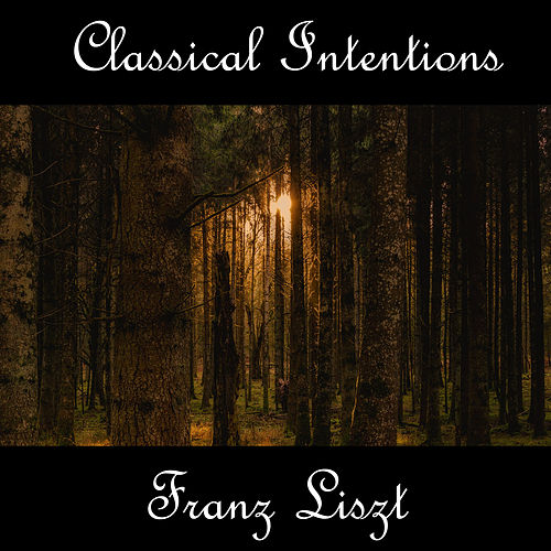 Play & Download Instrumental Intentions: Franz Liszt by Franz Liszt | Napster