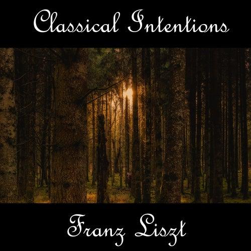 Instrumental Intentions: Franz Liszt by Franz Liszt