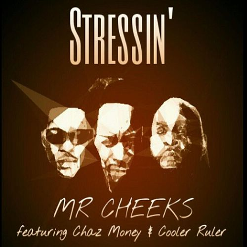 Play & Download Stressin (feat. Cooler Ruler & Chaz Money) by Mr. Cheeks | Napster
