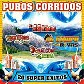 Puros Corridos 20 Super Exitos by Various Artists