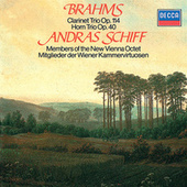 Play & Download Brahms: Clarinet Trio; Horn Trio by Various Artists | Napster