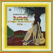 Lo Mejor de Su Folklore, Vol. 2 (Colección de Oro Bolivia) by Various Artists