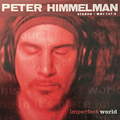 Play & Download Imperfect World by Peter Himmelman | Napster