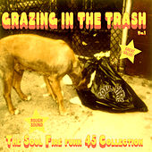 Play & Download Truth & Soul presents Grazing In The Trash Vol 1 : The Soul Fire Funk 45 Collection by Various Artists | Napster