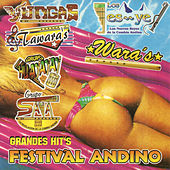 Play & Download Festival Andino Grandes Hit's by Various Artists | Napster