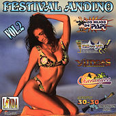 Festival Andino, Vol. 2 by Various Artists