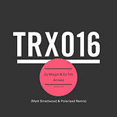 Access (Matt Smallwood & Polarised Remix) by DJ Misjah