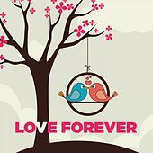 Play & Download Love Forever by Various Artists | Napster