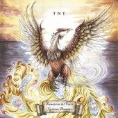 Transición del Fénix – Cenizas Desastre by TNT