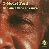 She Ain't None of Your'n by T-Model Ford