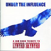 Under the Influence: A Jam Band Tribute to Lynyrd Skynyrd by Various Artists