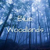 Play & Download Blue Woodlands by Meditation Music Zone | Napster
