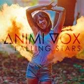 Falling Stars von Animi Vox