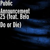 25 (feat. Belo Do or Die) by Public Announcement