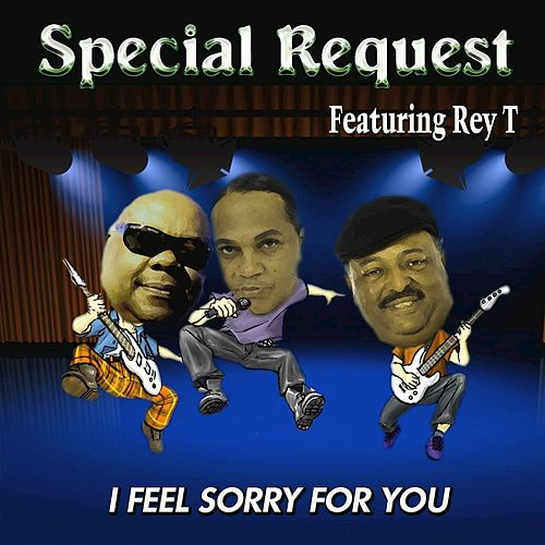 I Feel Sorry for You by Special Request