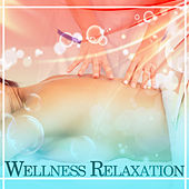 Play & Download Wellness Relaxation – Relaxing Music, Background Music for Hotel Spa, Massage, Wellness, Peaceful Sounds of Nature by Wellness | Napster