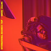 International Business Trip by Kweku Collins