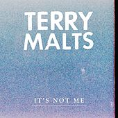 It's Not Me by Terry Malts