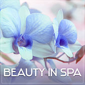 Beauty in Spa – Relaxation Wellness, Stress Relief, Deep Sleep, Soft Music, Nature Sounds for Rest, Spa Music, Peaceful Mind by S.P.A