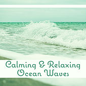 Play & Download Calming & Relaxing Ocean Waves – Sea Waves, Calming Music, Rest & Relax, New Age Healing Therapy by Nature Tribe | Napster