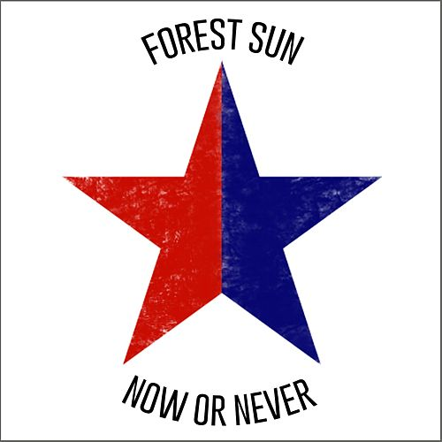 Play & Download Now or Never (feat. Ingrid Serban) by Forest Sun | Napster