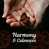 Play & Download Harmony & Calmness – Spa Music, Relaxation Wellness, Deep Sleep, Sea Waves, Soothing Piano, Pure Mind by Relaxing Piano Music Consort | Napster