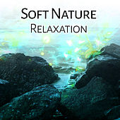 Play & Download Soft Nature Relaxation – Calm Sounds, Nature Waves, Healing Music, New Age to Rest, Chilled Melodies by New Age | Napster