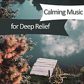 Play & Download Calming Music for Deep Relief – Nature Sounds for Relaxation, Relaxing Waves, Stress Free, Soft Music, Clamness, Harmony, Singing Birds by Relaxation and Dreams Spa | Napster