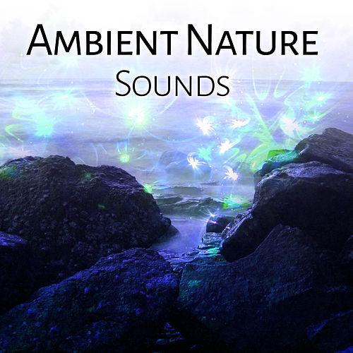 Play & Download Ambient Nature Sounds – Calm Your Mind, Relaxing Melodies, Stress Free, Inner Harmony by Echoes of Nature | Napster