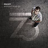Misidentified EP by Proff