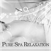 Play & Download Pure Spa Relaxation – New Age Music, Sounds of Nature, Music for Massage, Spa, Relaxation, Harmony Life, Zen by Sounds of Nature Relaxation | Napster