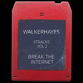 8Tracks, Vol. 2: Break the Internet by Walker Hayes